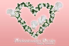 Hochzeitstauben Dresden